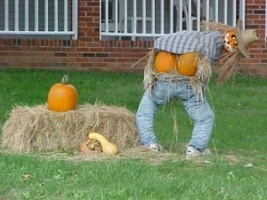 The mooning scarecrow